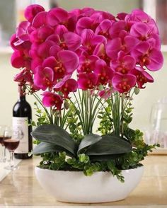 Orchids make a beautiful centerpiece when entertaining: Grow care and maintenance of orchid plants: Exotic Flowers, Tropical Flowers, Amazing Flowers, Pink Flowers, Beautiful Flowers, Orchids Garden, Orchid Plants, Flowers Garden, Planting Flowers