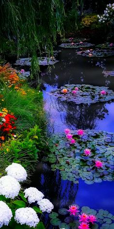 Animated gif about gif on We Heart It Beautiful Gif, Beautiful Morning, Beautiful Gardens, Beautiful Flowers, Beautiful Places, Scenery Pictures, Landscape Pictures, Nature Pictures, Wallpaper Iphone Neon