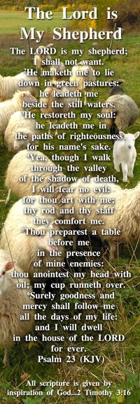 Psalm 23 - The Lord is My Shepherd - Bible Bookmark Religious Quotes, Spiritual Quotes, Bible Scriptures, Bible Quotes, Bible Prayers, Biblical Quotes, Scripture Verses, Beautiful Words, 5 Solas