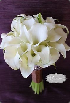 Simply white calla lily bouquet.