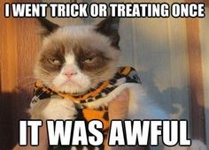 Grumpy Cat: I went trick or treating once ... it was awful. #cats #humor #grumpy