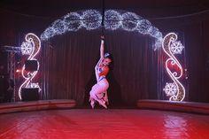 Lidia Togni Circus. Rome 2016.