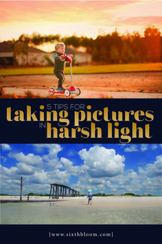 How to Take Pictures in Harsh Light, Shooting in Direct Sunlight, Lighting Tips for Photographer, Photography for beginners, Photography Lessons, Photography For Beginners, Photography Camera, Light Photography, Photography Business, Photography Tutorials, Digital Photography, Amazing Photography, Learn Photography