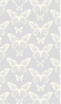 Removable Wallpaper Butterfly wallpaper by BCMagicWallpaper