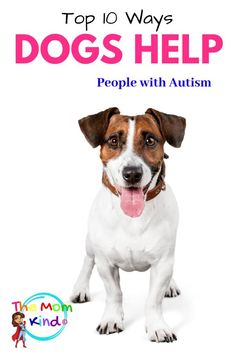 Ways Dogs Help People with Autism. Autism service dogs or even a companion dog, can make a huge difference for autistic children & adults Autistic People, Autistic Children, Children With Autism, Autism Parenting, Parenting Hacks, Autism Service Dogs, Companion Dog, Therapy Dogs