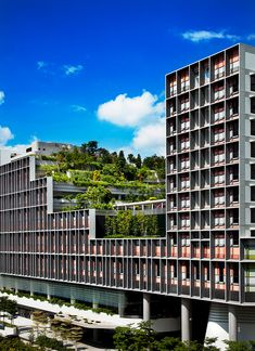 hotel architecture WOHA creates green community for senior citizens with Kampung Admiralty in Singapore. Singapore Architecture, World Architecture Festival, Hotel Architecture, Green Architecture, Concept Architecture, Contemporary Architecture, Architecture Design, Mix Use Building, Green Building