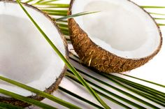 Food Nav 2/19/15: Warning letter slams coconut oil marketer over disease claims; The Food and Drug Administration has issued a warning letter to a coconut oil manufacturer for violations that included making drug claims on specific chemical constituents of the oil...