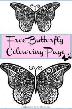 Free Butterfly Colouring Page
