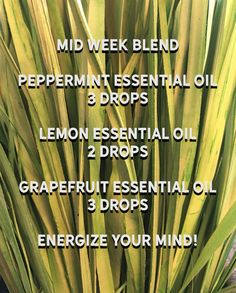 Just a blend to help get through the middle of each week. Bulk Essential Oils, Essential Oil Blends, Oil Benefits, Diffuser Blends, Apothecary, Aromatherapy, Essentials, Herbs, Iron Cleaning