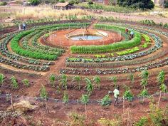 .Garden labyrinth