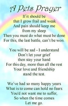 This is so touching. For Tabitha who crossed over the rainbow bridge :( Animal Quotes, Dog Quotes, Prayer Quotes, Animal Pics, Prayer For Deceased, Rottweiler, Dog Love, Puppy Love, Pass Away Quotes