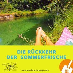 Camping auf Cres und Losinj: Im Mobilheim mit Hund. | Wiederunterwegs.com Holland Strand, Camping, Austria, Beach Mat, Berlin, Outdoor Blanket, Travel, Campsite, Viajes