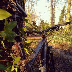 RG joehspicer: Cracking autumn ride today. In winter. Gotta love global http://ift.tt/1ms5Byu
