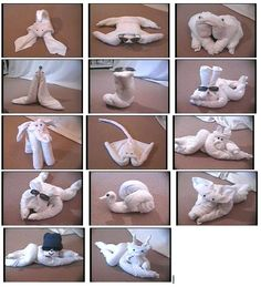towel animals :)