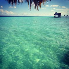 Belize ... Who doesn't wish they could hold their feet in this crystal clear water right now? #travellingtreasures #crystalclear #whitesand #carribean #magicview #travelling