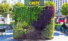 Urban Crepe is a blooming Buenos Aires food stall in a repurposed shipping container   Inhabitat - Green Design, Innovation, Architecture, Green Building