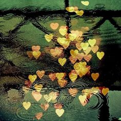 shimmery hearts in the water