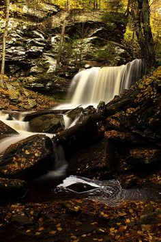Waterfalls, in Ricketts Glen State Park, Pennsylvania