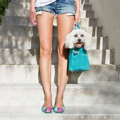 Dogs and Tieks: A girl's best friend. Tieks Ballet Flats, Tieks Shoes, Tieks By Gavrieli, Most Comfortable Shoes, Women's Summer Fashion, Girls Best Friend, Me Too Shoes, Going Out, Summer Outfits