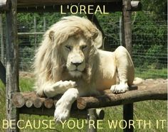 Because you're worth it.