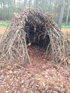 Natural den building in Forest School- using nature for the core of the learning process