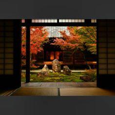 2016.12/1 建仁寺  この庭の奥の御座敷には、俵屋宗達作の「風神雷神図」が飾られています。  この絵は、宗達が描いたという記録は何処にも記されていないそうなのですが、何の疑いもなく宗達作と伝えられています。  そんな絵の前に、何の疑いもない美しい庭が添えられていました。  #京都 #建仁寺 #秋 #紅葉 #風神雷神 #御寺 #寺 #庭 #ぶらり京都撮影部 #キタムラ写真投稿 #そうだ京都行こう  #Japan #Kyoto #kenninji #temple #autumn #ColorReverse #icu_japan #ig_nippon #ig_japan #ig_nihon #team_jp_#team_jp_西(京都) #ptk_japan #wu_japan #loves_japan #loves_nippn #garden #photo_Jpn