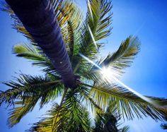 It is time to live the Sandos Playacar beach experience !  Es momento de vivir la experiencia en la playa en Sandos Playacar !