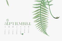 Plant Leaves, 2016 Calendar, September