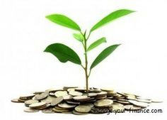 Everything you need to know about green finance. - Manage Your Finance #gogreen