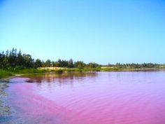 Is That Really Pink!? 5 of the World's Weirdest Lakes: Lake Retba in Senegal, West Africa