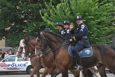 Mounted police patrol. Royalty free stock photos. All pictures are free for commercial and personal use. http://www.publicdomainpictures.net