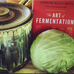 "Amy Potter sauerkraut crock and Sandor Katz's newest book, ""The Art of Fermentation"" with a Colvin Farms cabbage!  - www.amypotter.com"