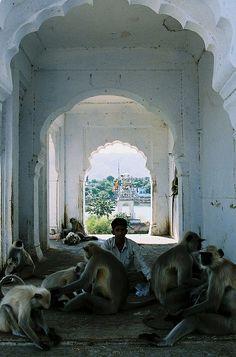'Persones' de Pushkar by calippofresa, via Flickr  India