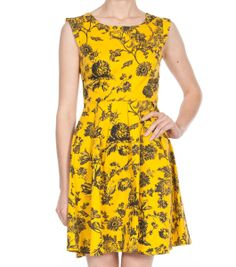 Wild Daisy Dress   Dangerfield... I am in love with the colour of this dress!