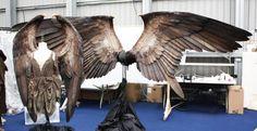 アンジェリーナ・ジョリーが映画「マレフィセント」で身につけた羽