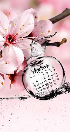 Wallpaper iPhone calendar may 2016 Calendar March, Desktop Calendar, Calendar Wallpaper, Iphone 6 Wallpaper, Wallpaper For Your Phone, Nature Wallpaper, Wallpaper Backgrounds, Phone Wallpapers, Hello Spring Wallpaper