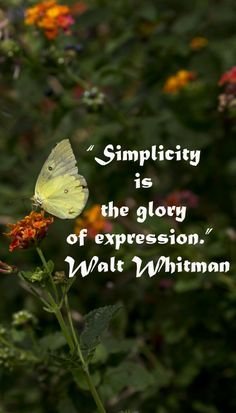 Simplicity is the glory of expression. ~ Walt Whitman