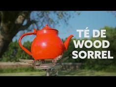 Té de wood sorrel – Sandy La Pastelera Wood Sorrel, Tea Pots, Wood, Tea Pot, Tea Kettles