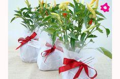 Rosely Pignataro: Lembrancinhas de casamento - para todos os gostos