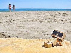Danbo summer time | por montsegui