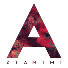 ZIAMIMI + DAMIER Font by Jacopo Severitano, via Behance
