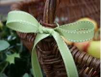 Sage Green Stitched Ribbon #janemeans