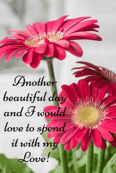 romantic message for love with lovely flowers Good Morning Romantic, Good Morning Kisses, Good Morning Beautiful Pictures, Good Morning Nature, Good Morning Texts, Happy Morning, Good Morning Photos, Morning Quotes, Morning Pictures