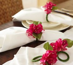 1000 Images About Bougainvilleas On Pinterest