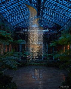 lightshower by bruce munro  longwood gardens, kennet square, Pennsylvania, USA