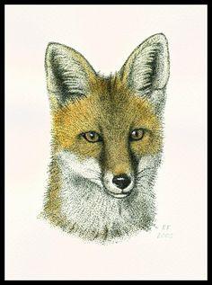 Fox Portrait by =Skia on deviantART
