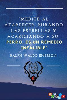 """""""Medite al atardecer, mirando las estrellas y acariciando a su perro, es un remedio infalible"""". Ralph Waldo Emerson #VCPBT #FraseSemanal"""