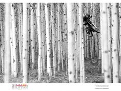 The world's greatest action and adventure sport photography contest is back.Now in its third edition, The Red Bull Illume Image Quest attracts the top names in action and adventure sports photography. Red Bull, Tilda Swinton, Mountain Biking, Matt Hunter, Vancouver, Bike Photography, Action Photography, Adventure Photography, People Photography