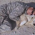 Ryan Anderson spent 365 days in Afghanistan with a Golden Retriever named Freddie by his side. The two shared a tight bond that continued for years after when Anderson adopted Freddie. At almost 14 years old it was finally time for Anderson to say goodbye to his friend on Wednesday afternoon.