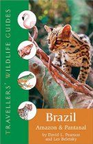 Going to Brazil Brazil Amazon, Tropical Forest, Travel Guides, Wilderness, Wildlife, Nature, Southern, June, David